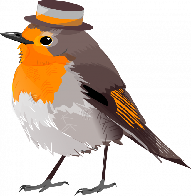 Illustration of a cute bird with hat.